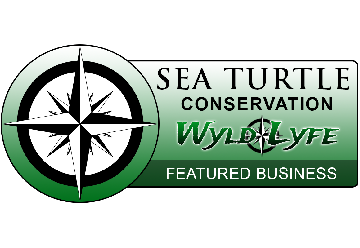 sea turtle featured badge2